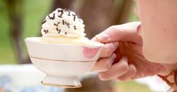 Cupcake Picnic