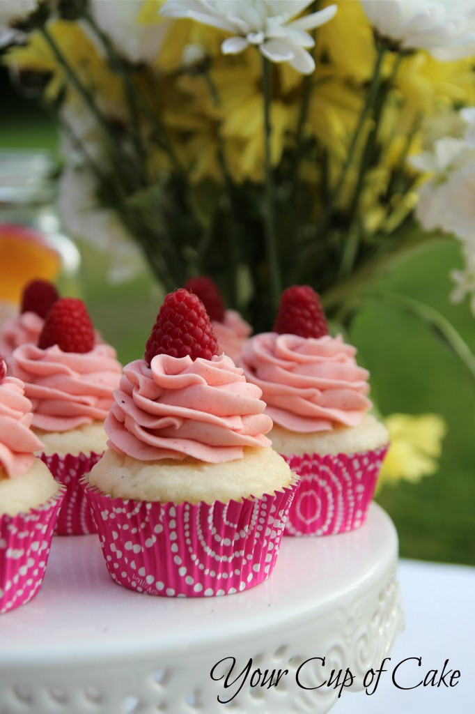 Double Berry Vanilla Cupcakes - Your Cup of Cake