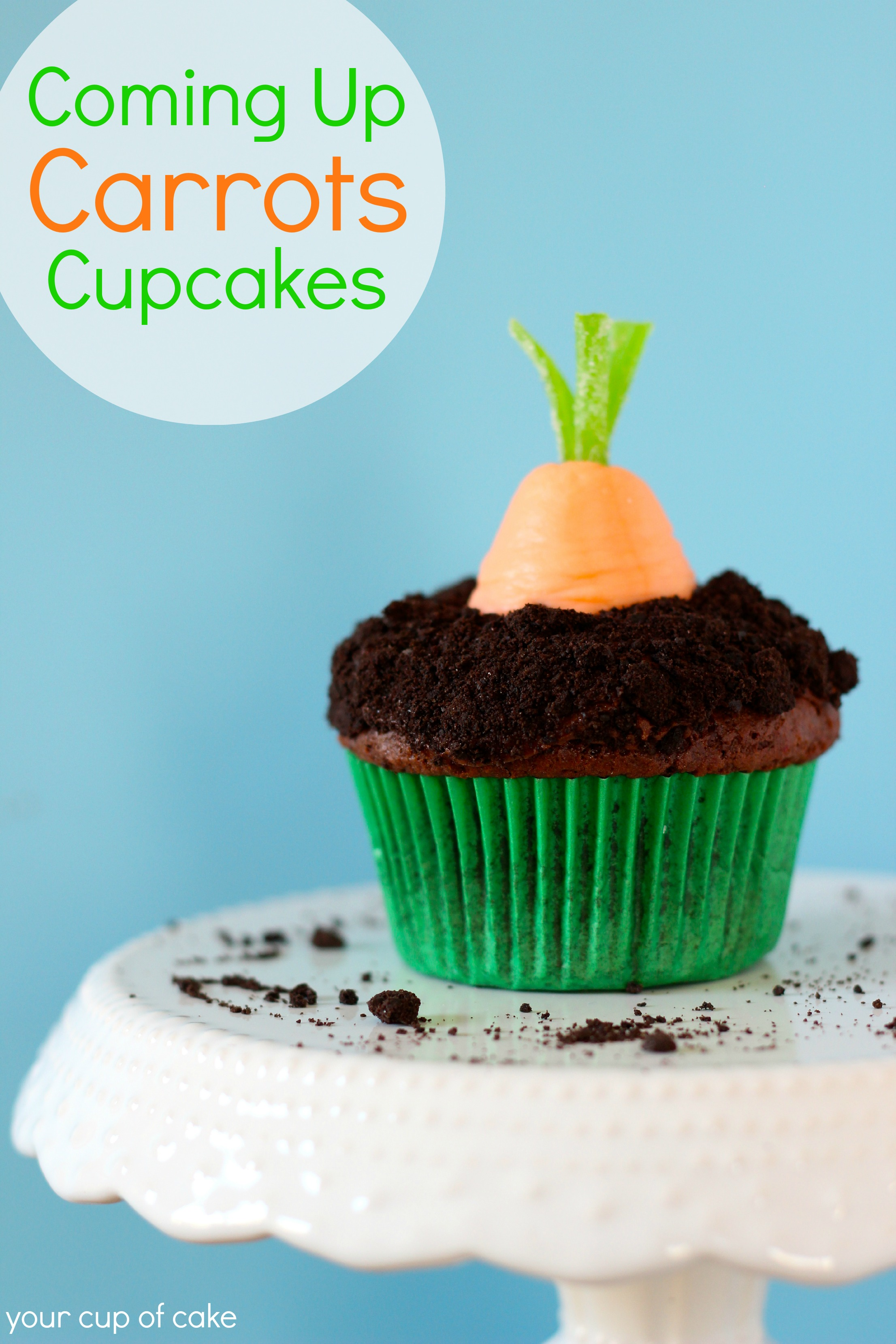 Coming Up Carrots Cupcakes - Your Cup of Cake