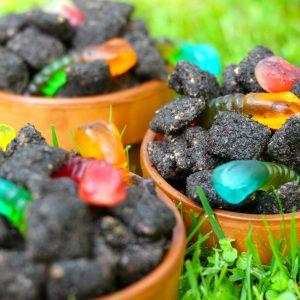 Dirt Puppy Chow