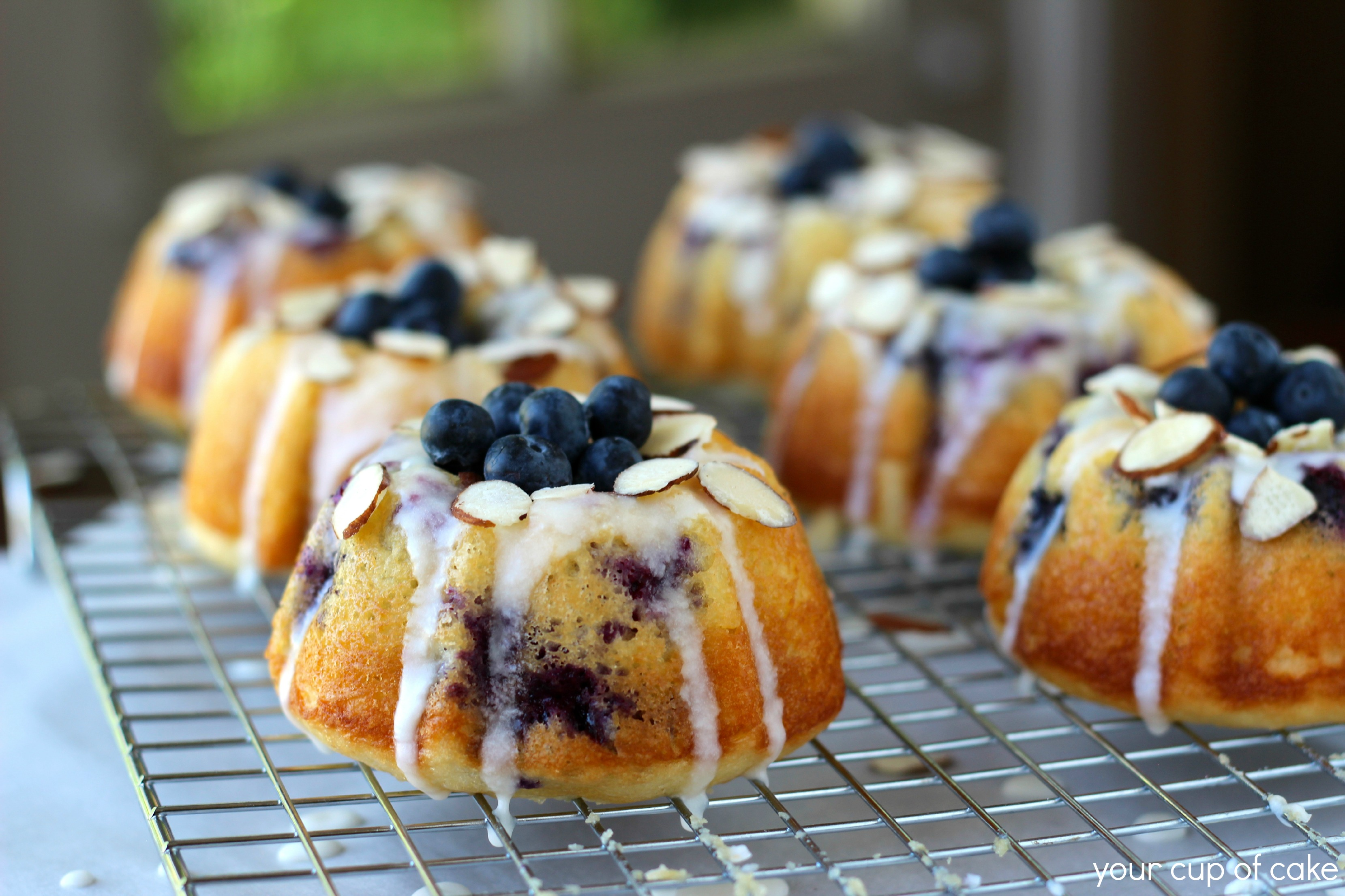 Blueberry Almond Mini Bundt Cakes Your Cup Of Cake