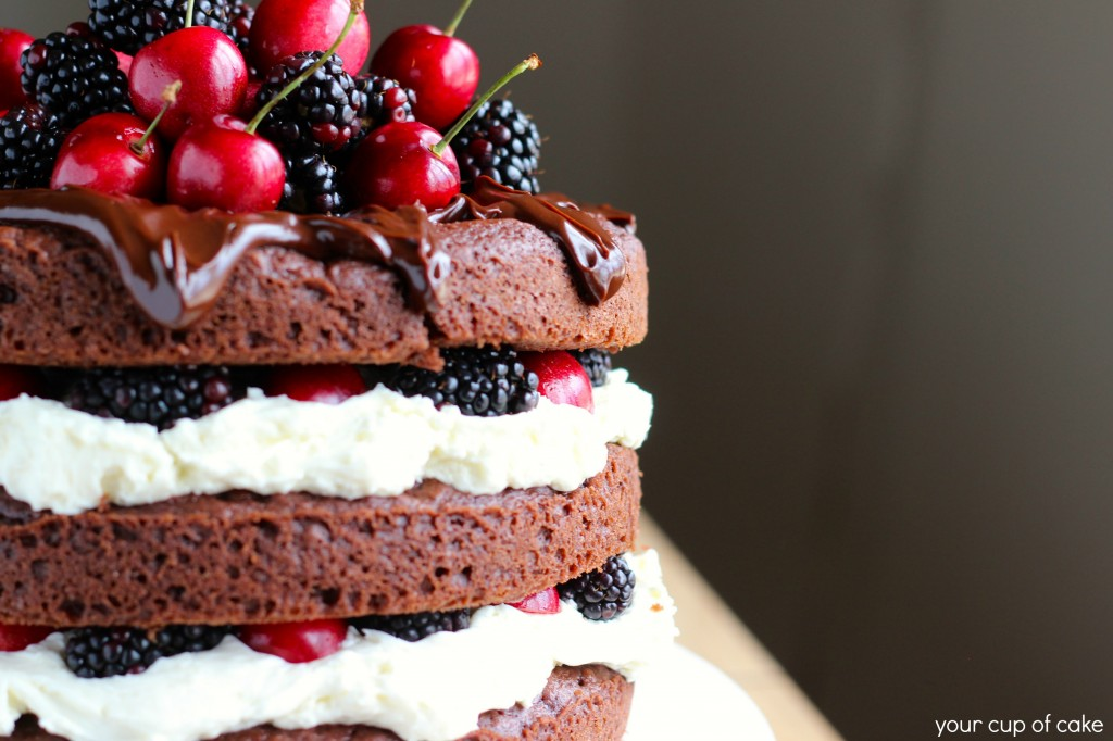 Blackberry and Cherry Whipped Cream Cake