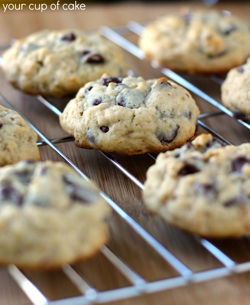 ... chocolate chip muffins banana chocolate chip muffins banana chocolate