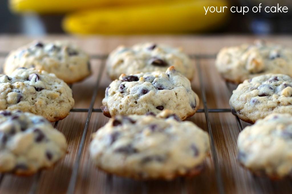 Banana Oatmeal Chocolate Chip Cookies Recipes — Dishmaps