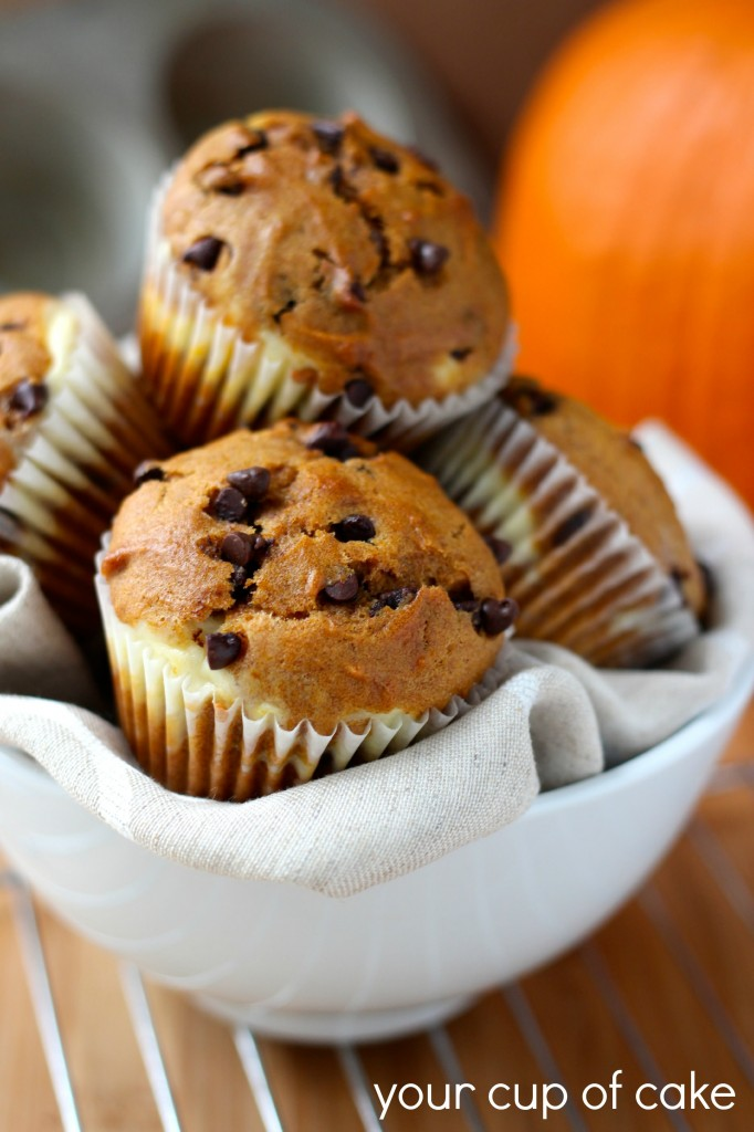 Chocolate Chip Pumpkin Muffins with Cream Cheese Swirl