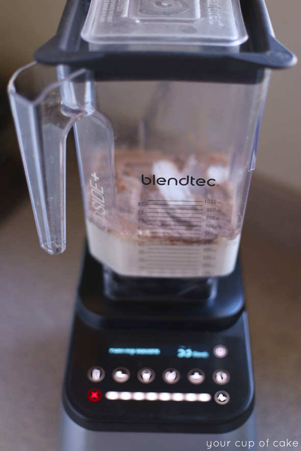 Why I love my BlendTec