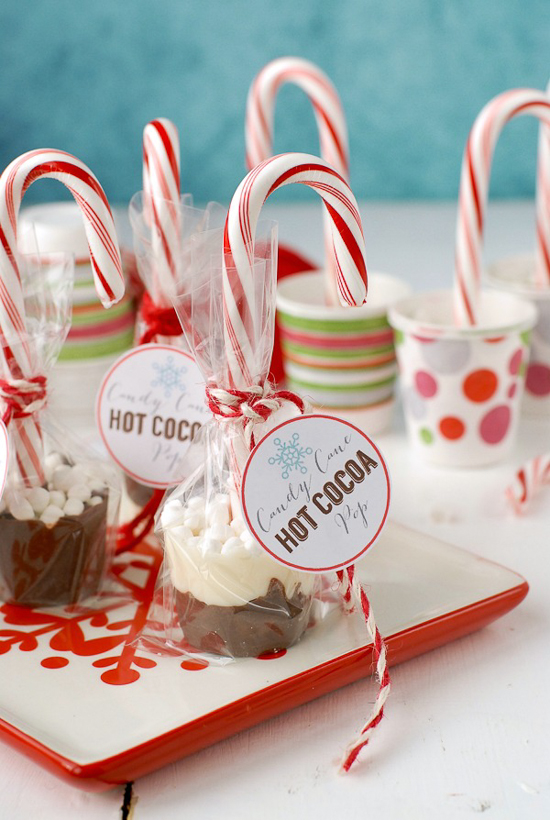 Candy Cane Hot Cocoa Pops | Boulder Locavore