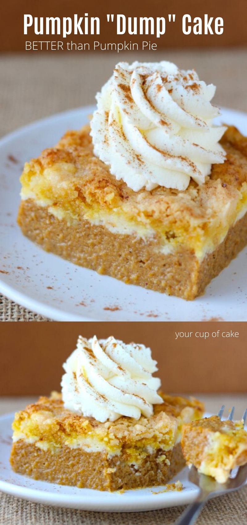 BETTER than pumpkin pie! This Pumpkin Dump Cake has a cream cheese swirl and takes just a few minutes to make! No fussing with crust for this Thanksgiving dessert