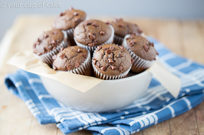 Low Fat Chocolate Mini Muffins that are dairy free!