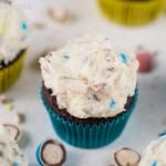 Easy Whopper Egg Cupcakes