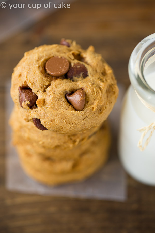 THE BEST Bakery Style Pumpkin Chocolate Chip Cookies