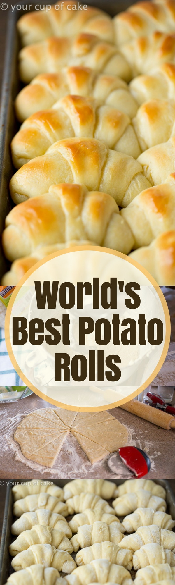World's Best Potato Rolls! These are the fluffiest and best dinner rolls I have ever made!