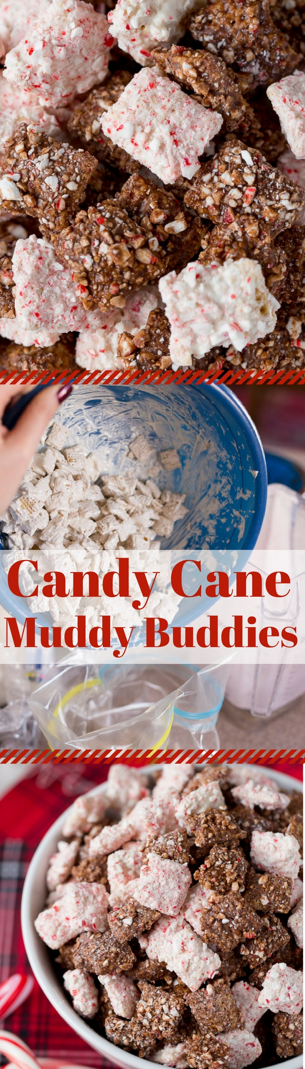 Candy Cane Muddy Buddies  for Christmas!  These are AMAZING and the perfect easy treat to make for neighbors and parties!
