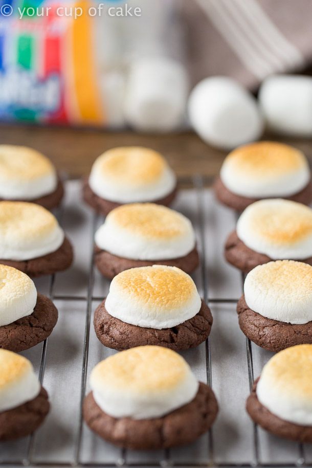 Hot Chocolate Cookies with Toasted Marshmallows