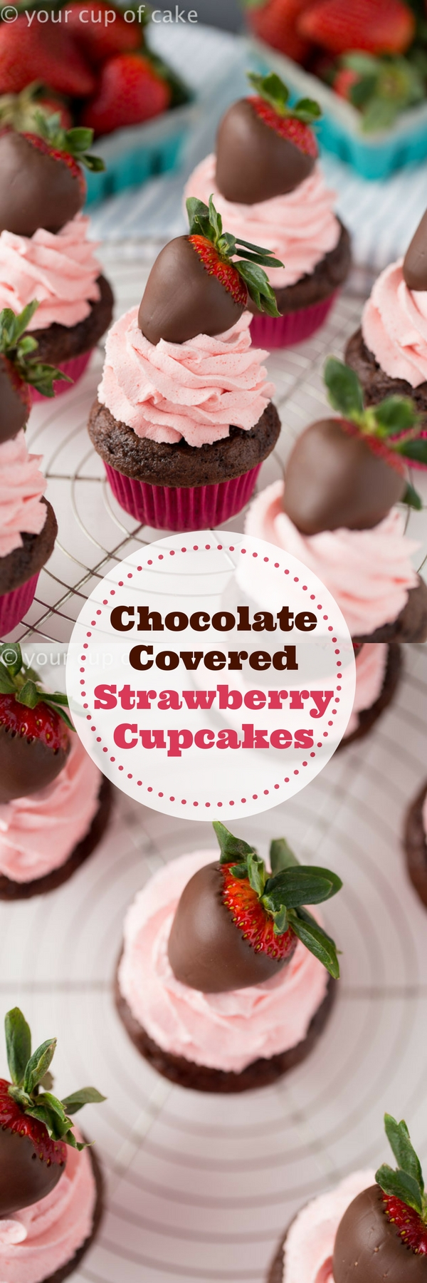 Chocolate Covered Strawberry Cupcakes with Strawberry Whipped Cream, LOVE this easy recipe!