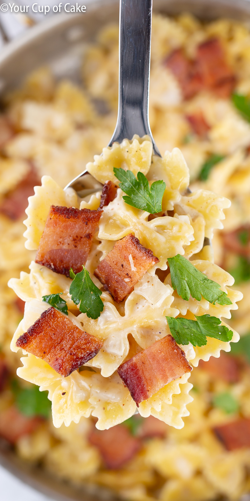 My family LOVES this Easy One Pot Bacon Alfredo Pasta
