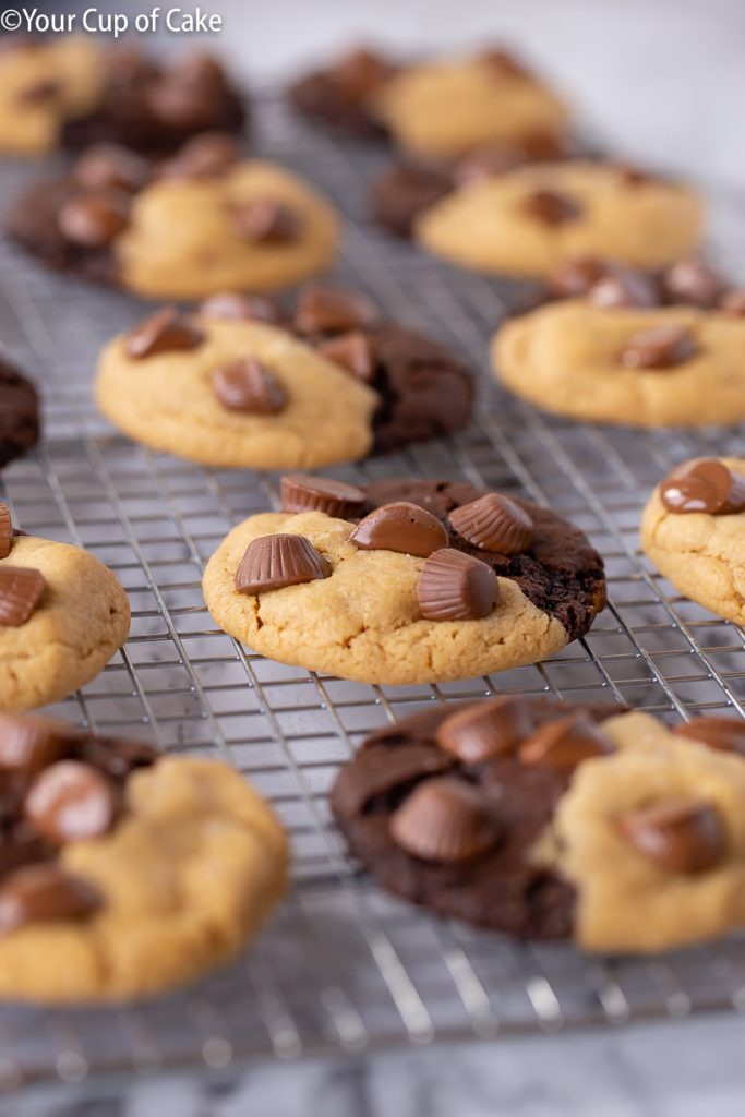 Ultimate Chocolate Peanut Butter Cookies with Reese's Peanut Butter Cups