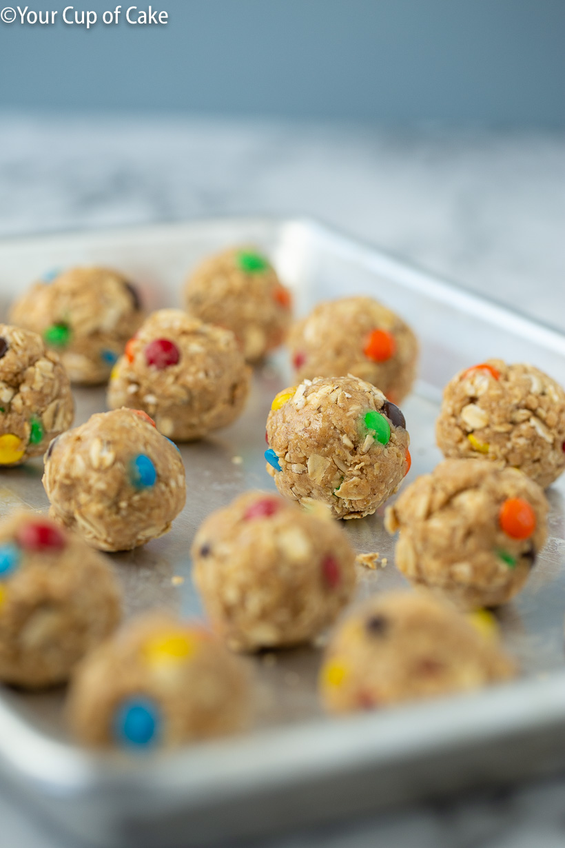 Monster Cookie Protein Bites recipe
