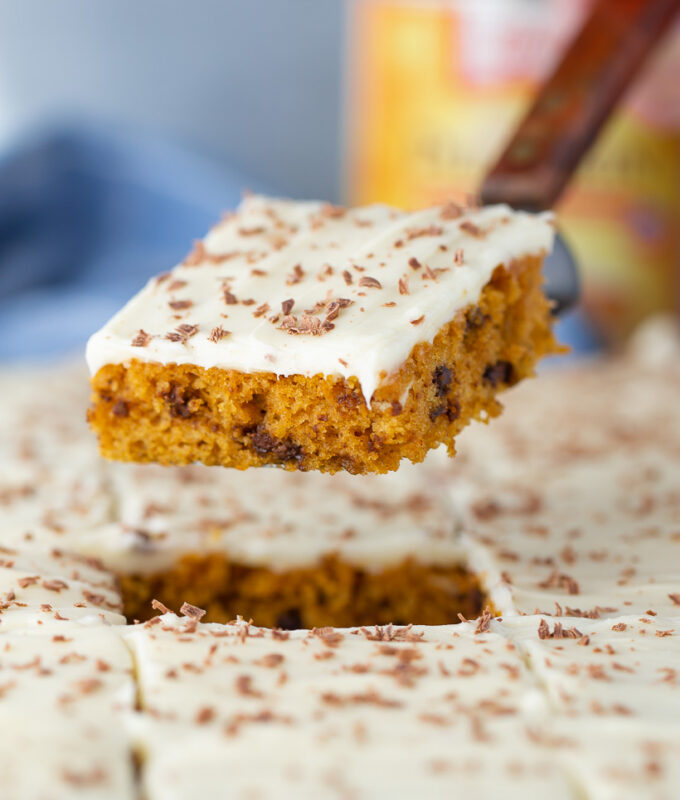 I make this Pumpkin Chocolate Chip Sheet Cake EVERY YEAR! It's SO good!