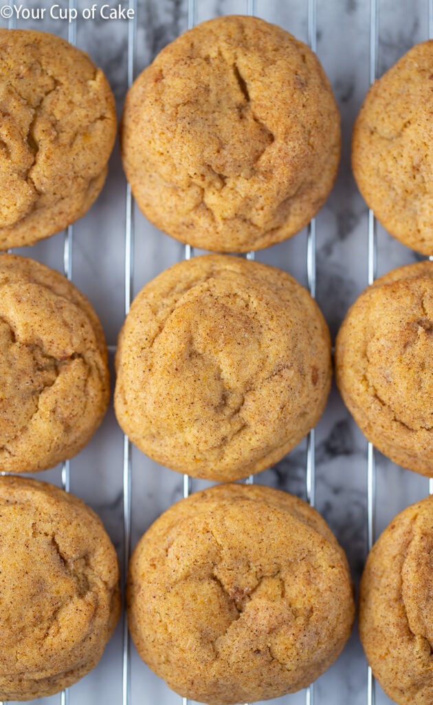 My family BEGS me to make these every fall! AMAZING Pumpkin Snickerdoodles