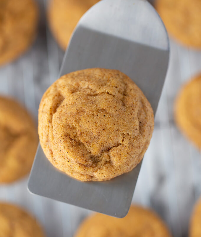 I'm OBSESSED with these pumpkin cookies! AMAZING Pumpkin Snickerdoodles
